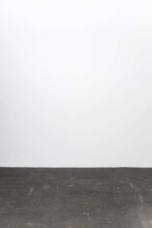 in the floor: Minimalistic interior with an empty white wall and stone floor