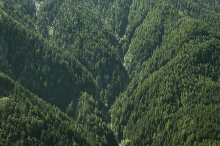 austrian: Mountain side in the austrian alps