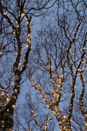 christmas decorations: Beautiful christmas decorations in a tree Stock Photo