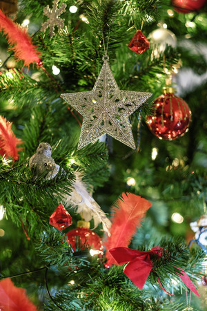 star ornament: Silver star ornament on a christmas tree close-up Stock Photo