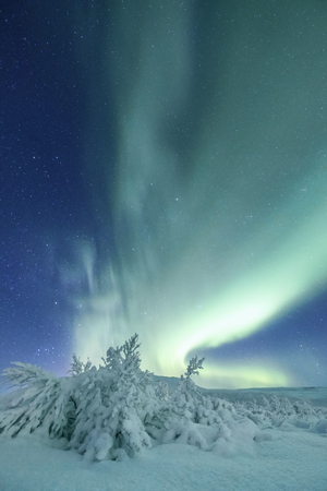 Amazing authentic northern lights dancing in a starry sky above snow covered landscape Stock Photo