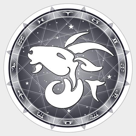 stardom: zodiac sign Capricorn