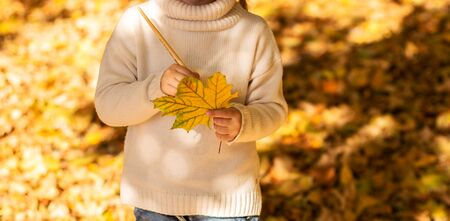 Cute little girl  in a light sweater drawing with paint autumn leaves outside. Park and Autumn Leaves on a Background. Autumn season concept.