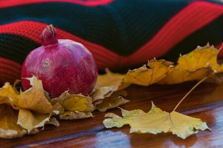Whole Pomegranate on a Red and Black Knitted Sweater with Autumn Yellow Leaves on a Dark Wooden Background. Autumn Concept