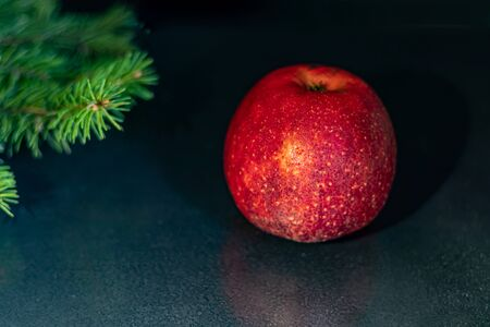 Red apple on a black background. Christmas tree branch. New Year. Copy space. Vegetarianism.
