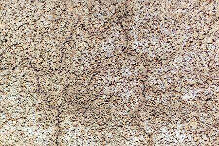 Old concrete wall, natural texture. Light background. The shadows. Copy space