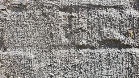 Old concrete wall, natural texture. Light background. The shadows. Copy space.
