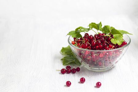 Red currants on a light wooden background. Vitamin cocktail. Copy space.