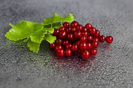 Red currants and green leaves on a dark background. Vitamin cocktail. Copy space