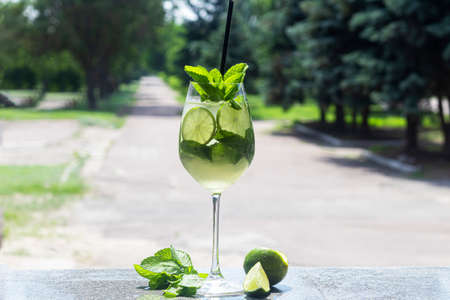 A refreshing summer cocktail with a slice of lime. Alcoholic drink. Garnished with a sprig of mint and ice cubes. In the bar. Foreground.