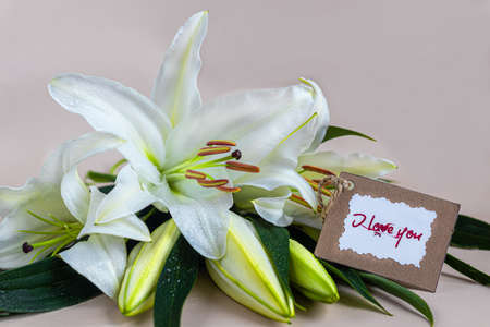 A bouquet of lilies on a light background. Mother's Day, Women's Day, Valentine's Day or Birthday. Copy space. Stok Fotoğraf - 163747024