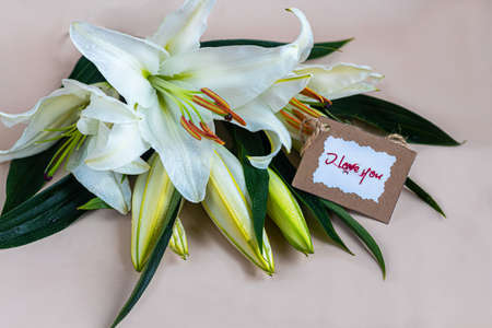 A bouquet of lilies on a light background. Mother's Day, Women's Day, Valentine's Day or Birthday. Copy space. Stok Fotoğraf - 163747028