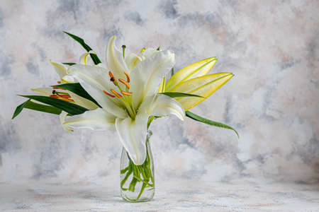 A bouquet of lilies on a light background. Mother's Day, Women's Day, Valentine's Day or Birthday. Copy space. Stok Fotoğraf - 163747033