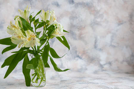 A bouquet of lilies on a light background. Mother's Day, Women's Day, Valentine's Day or Birthday. Copy space. Stok Fotoğraf - 163747037