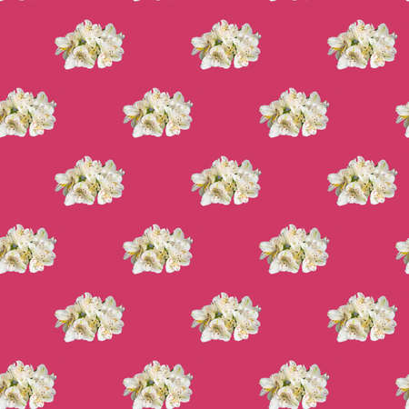 Seamless pattern with flowers on a bright background. Minimal isometric food texture. Used for boards, printing on fabric. Copy space. Stok Fotoğraf - 164056455