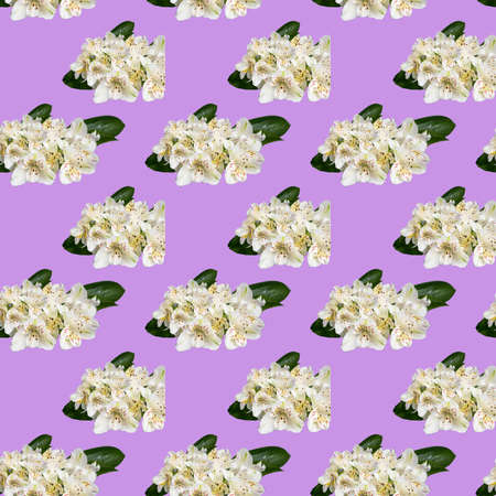 Seamless pattern with flowers on a bright background. Minimal isometric food texture. Used for boards, printing on fabric. Copy space. Stok Fotoğraf - 164056462