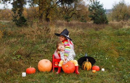 two little sisters are sitting in the middle of a field and hugging each other around a lot of large and small pumpkins.the theme of Halloween.the girl in the big wizard's hat