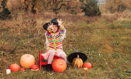 an evil girl is sitting in a meadow among a large and small pumpkin in a large wizard's hat and is engaged in witchcraft.Halloween
