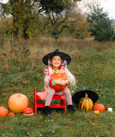 a girl in a big hat is sitting on a chair and holding a big pumpkin in her hands around a lot of big and small pumpkins.Halloween.