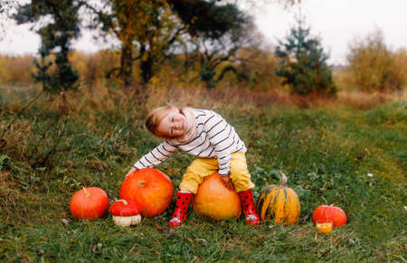 a little girl in yellow pants and red boots is sitting on a large pumpkin there are many large and small pumpkins around 写真素材