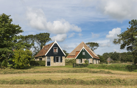 texel: Two typical houses of the isle of Texel, with in front a meadow with hay en some trees.
