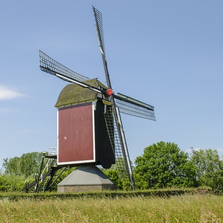 maas: Mill at Nederasselt, near the floodplains of the Maas and in the background a small forest. Stock Photo