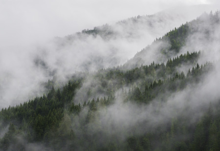 saalfelden: Mountains with forest of fir and clouds and fog. Stock Photo