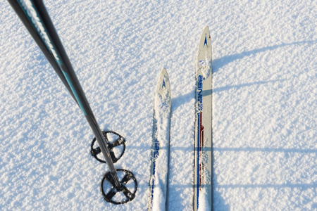 wintersport: Ski and ski poles in the morning light and snow.