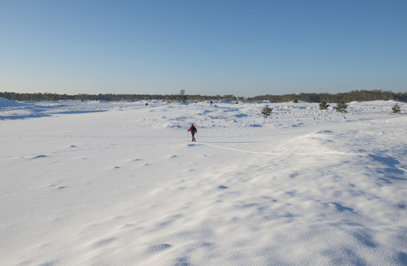 wintersport: Woman in a red jacket cross country skiing in winter National Park Loonse en Drunense Duinen.