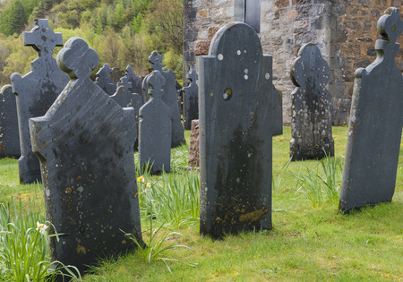 gravestones: Graveyard Ballachulish black with old gravestones on grass in spring. Stock Photo