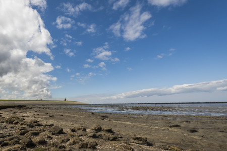 dikes: Coastline of the Waddensea at Friesland with mud flats and protection poles and dikes. In the background the church of Wierum. Stock Photo