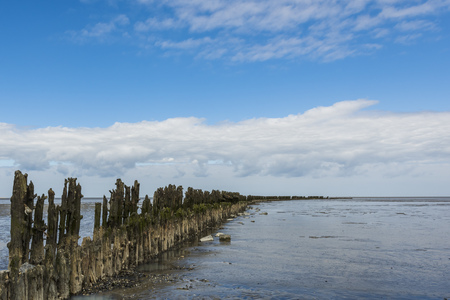 dikes: Coastline of the Waddensea at Friesland with mud flats and protection poles and dikes.