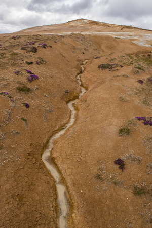 hot water geothermal: Geothermal landscape Krafla on Iceland with red dirt and a hot water stream down a hill. Stock Photo