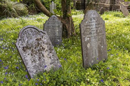 Godolphin, Engeland - 25 april 2017: Kerkhof in Godolphin met oude grafstenen, boshyacinten en driekante prei, Cornwall, Engeland. Redactioneel