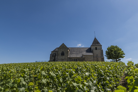 The church of Chavot with the vineyards in the Champagne district on a summers day, France