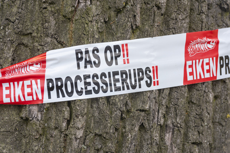 Bunnik, The Netherlands - June 19, 2018: warming for the oak processionary on a oak tree. Editöryel