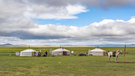 Tsagaan-Uul, Mongolia - August 11, 2019:  Three white yurts on the wide and green steppe of Mongolia with horse.