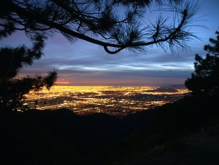 Los Angeles at night with mountain pine forest foreground.