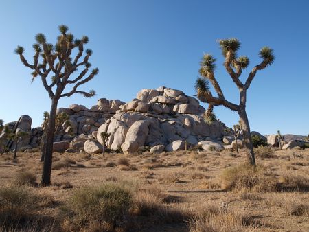 Rock formations at California's Joshua Tree National Park. Stock Photo - 5684273