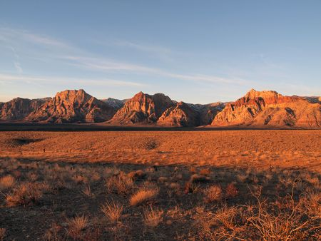 plantas del desierto: Amanecer c�lida luz en �rea recreativa de Nevada Red Rock.