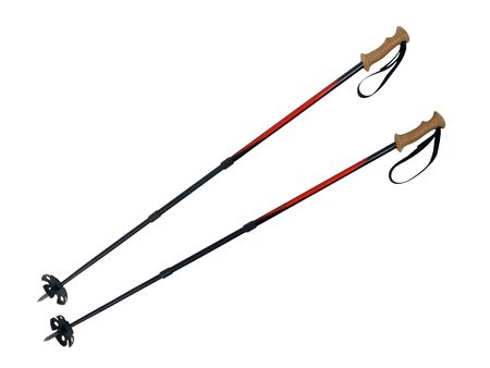 hiking stick: Ski and hiking poles with large snow cups.