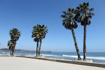 Ventura beach plaza and palms with pier in the background. Stock Photo - 6925486