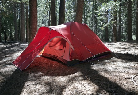 Backlit red tent in a peaceful California forest.