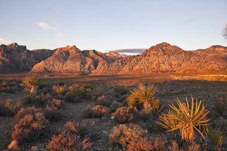 nevada: Warm dawn light at Red Rock Conservation area near Las Vegas Nevada.   Stock Photo
