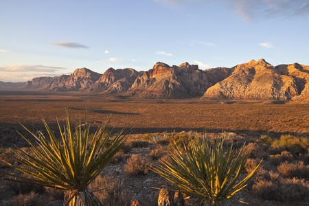 Warm dawn light at Red Rock National Conservation Area in southern nevada, Stock Photo - 8054563