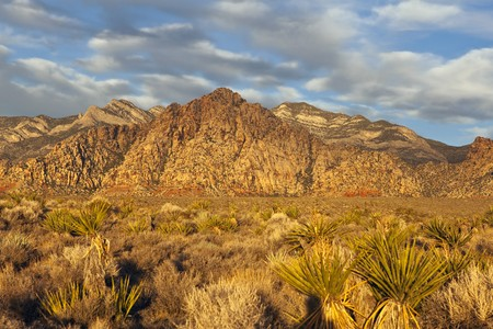 Warm sunrise light at La Madre peak in Nevada's Red Rock National Conservation Area near Las Vegas. Stock Photo - 8127484