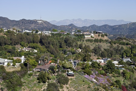 hill: Hollywood, California, USA - February, 2nd 2011:  Hollywood Sign and hillside homes viewed from famous Runyon Park above Los Angeles.