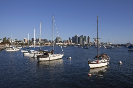 Downtown towers and peaceful marina in scenic San Diego, California.
