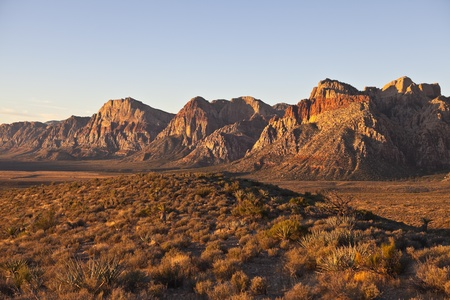 mojave desert: Dawn light at Red Rock National Conservation Area in Southern Nevada.
