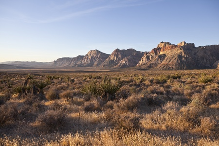 nevada: Red Rock Nevada in warm early morning light. Stock Photo
